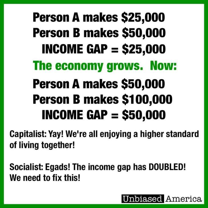 Capitalist Socialist
